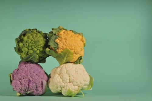 Green, yellow, purple and white cauliflower against green background